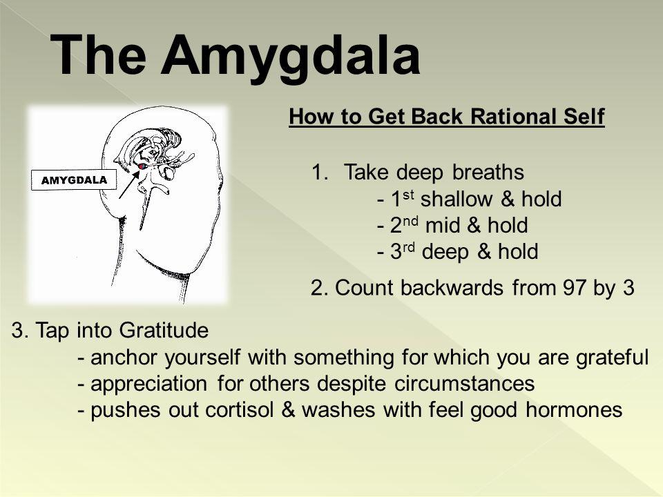 universal emotion – we all have an amygdala.