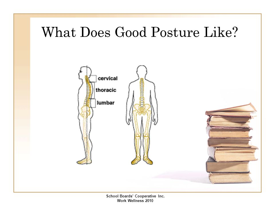 What Does Good Posture Like? School Boards' Cooperative Inc. Work Wellness 2010