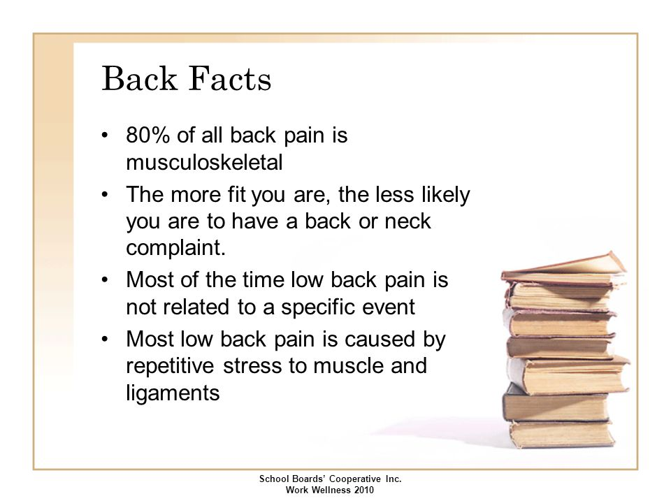Back Facts 80% of all back pain is musculoskeletal The more fit you are, the less likely you are to have a back or neck complaint. Most of the time lo