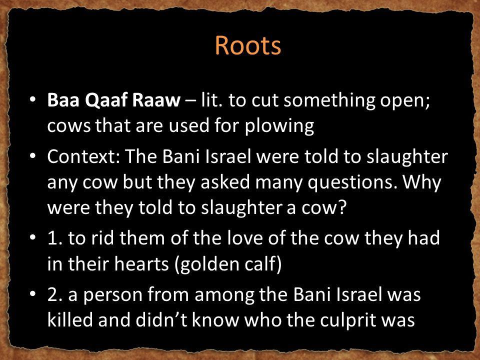 RRoots Baa Qaaf Raaw – lit.