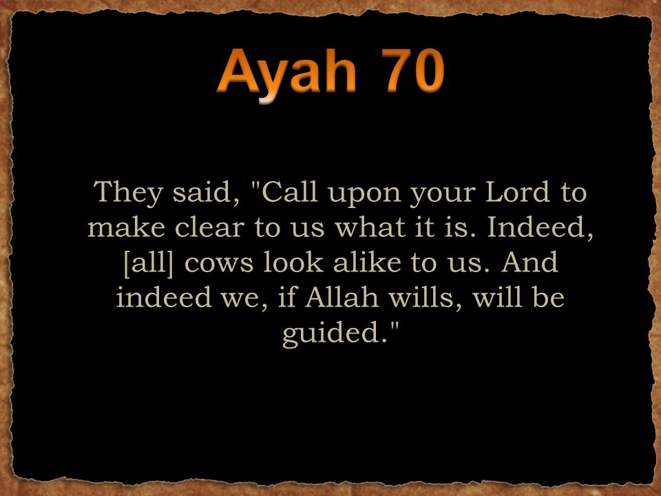 They said, Call upon your Lord to make clear to us what it is.