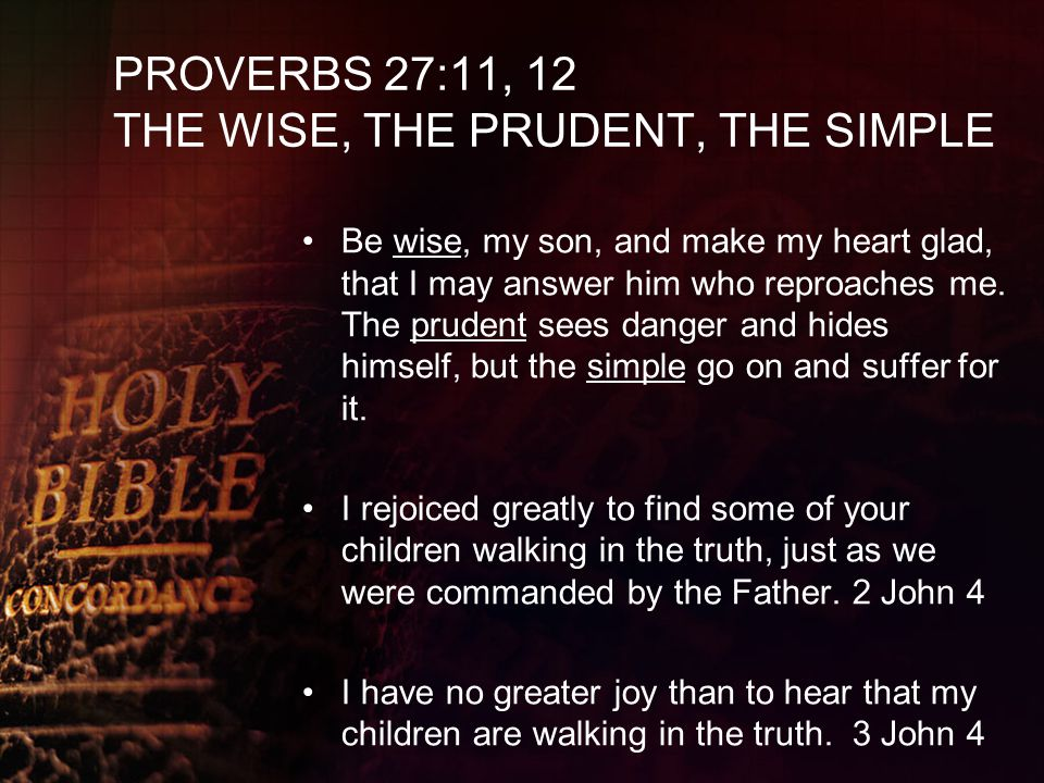 PROVERBS 27:11, 12 THE WISE, THE PRUDENT, THE SIMPLE Be wise, my son, and make my heart glad, that I may answer him who reproaches me. The prudent see