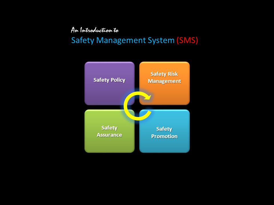 An Introduction to Safety Management System (SMS) Safety Policy Safety Risk Management Safety Promotion Safety Assurance