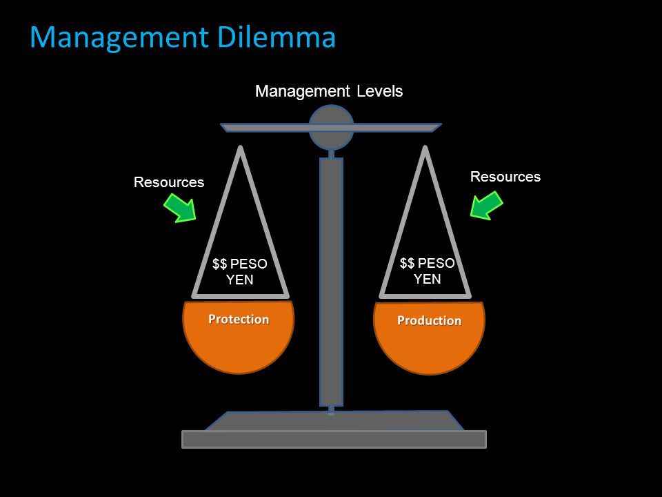 Management Levels Resources $$ PESO YEN