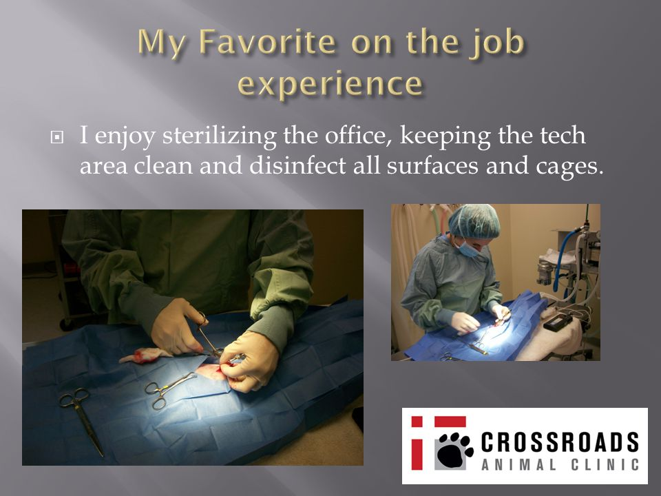  I enjoy sterilizing the office, keeping the tech area clean and disinfect all surfaces and cages.