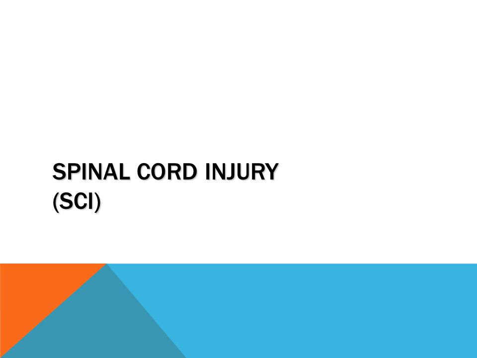 SPINAL CORD INJURY (SCI)