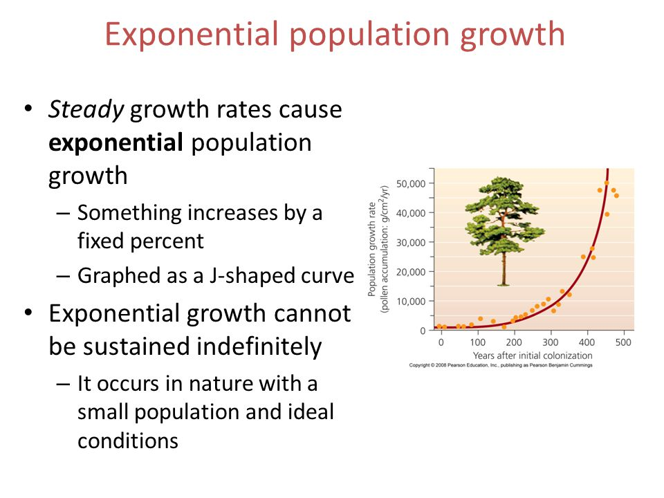 Exponential population growth Steady growth rates cause exponential population growth – Something increases by a fixed percent – Graphed as a J-shaped curve Exponential growth cannot be sustained indefinitely – It occurs in nature with a small population and ideal conditions