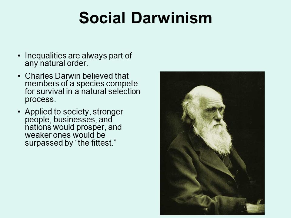 Social Darwinism Inequalities are always part of any natural order. Charles Darwin believed that members of a species compete for survival in a natura