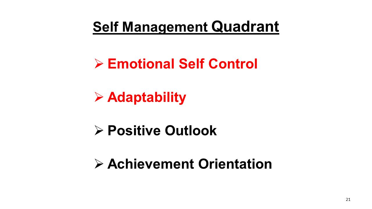 Self Management Quadrant  Emotional Self Control  Adaptability  Positive Outlook  Achievement Orientation 21