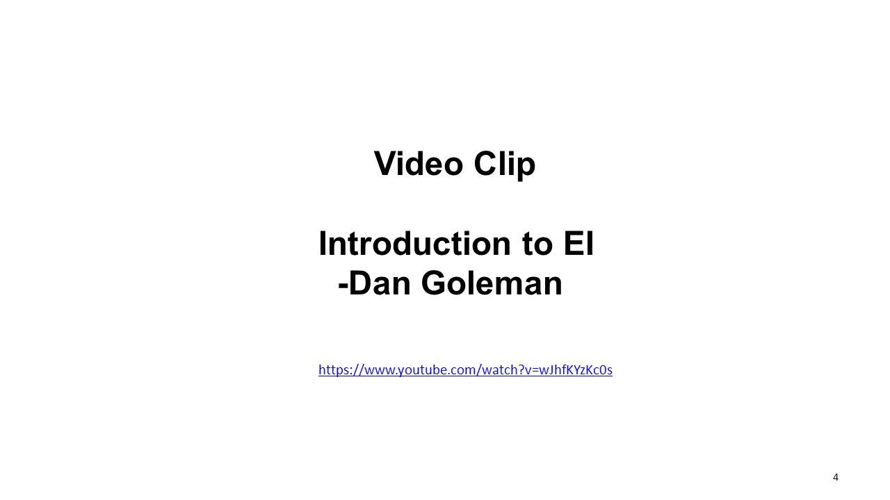 Video Clip Introduction to EI -Dan Goleman https://www.youtube.com/watch?v=wJhfKYzKc0s 4