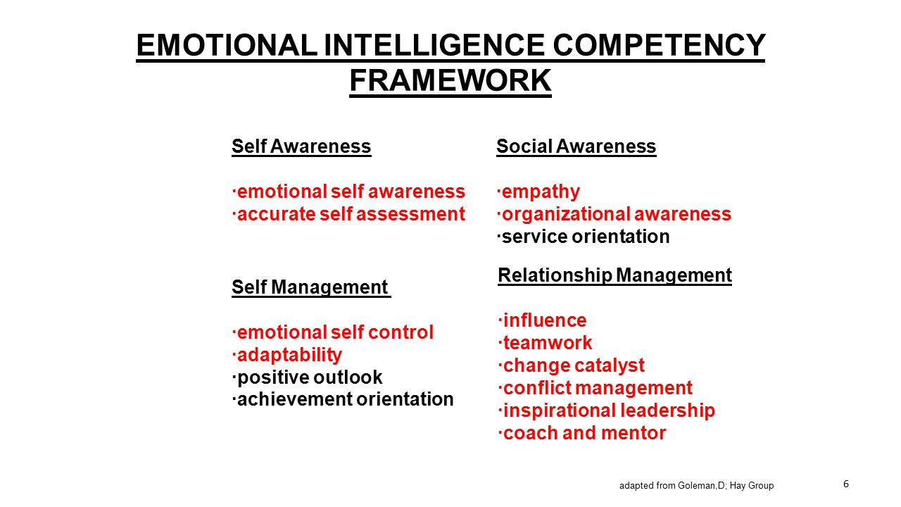EMOTIONAL INTELLIGENCE COMPETENCY FRAMEWORK Self Awareness ·emotional self awareness ·accurate self assessment Social Awareness ·empathy ·organization