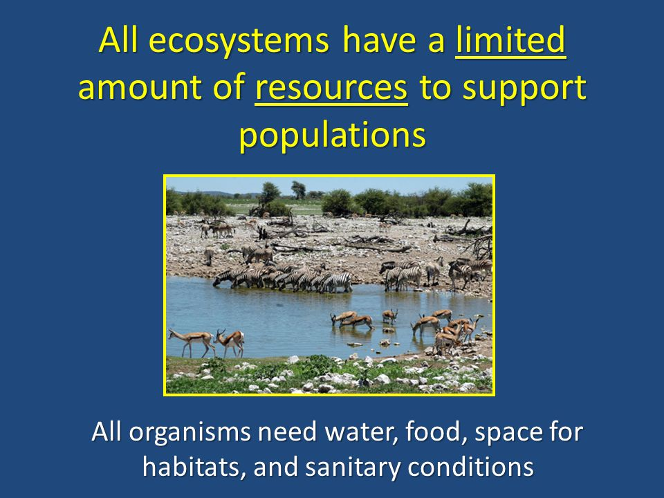 All ecosystems have a limited amount of resources to support populations All organisms need water, food, space for habitats, and sanitary conditions