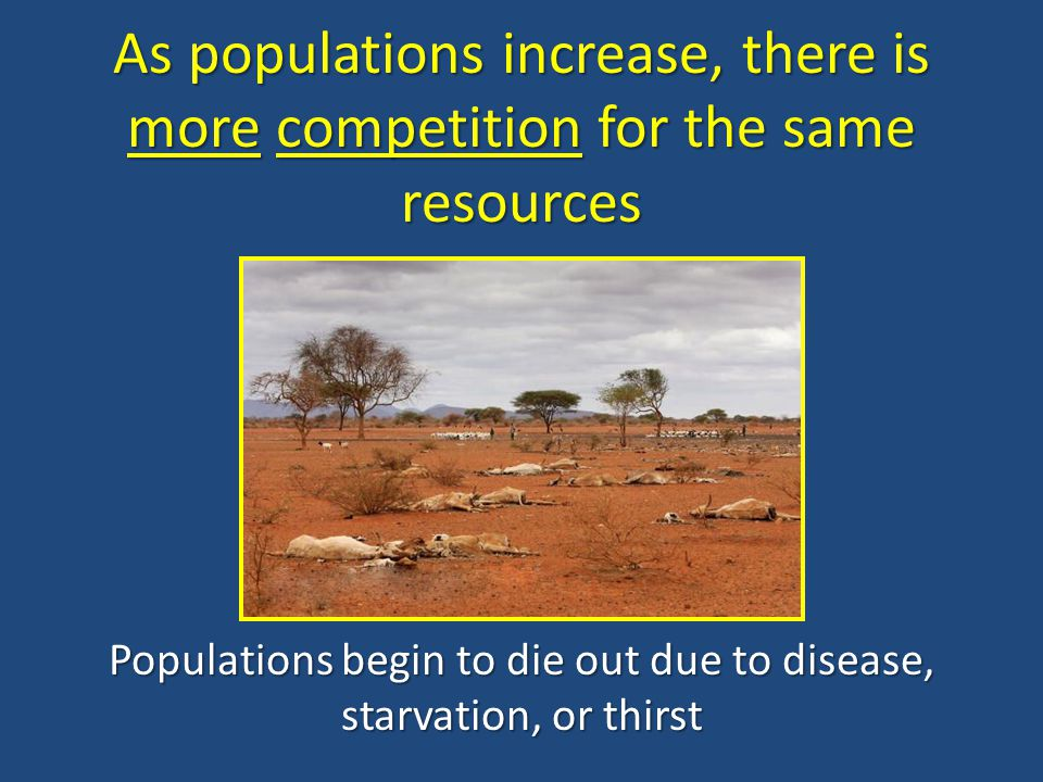 As populations increase, there is more competition for the same resources Populations begin to die out due to disease, starvation, or thirst