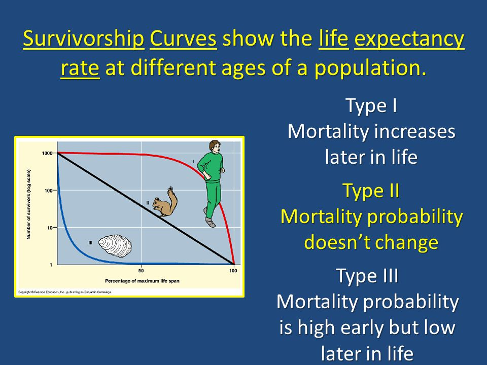 Survivorship Curves show the life expectancy rate at different ages of a population. Type I Mortality increases later in life Type II Mortality probab