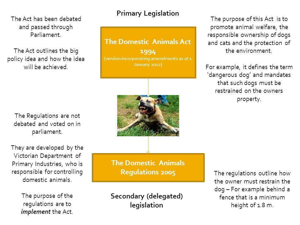 The Domestic Animals Act 1994 (version incorporating amendments as at 1 January 2012) The Domestic Animals Regulations 2005 The purpose of this Act is