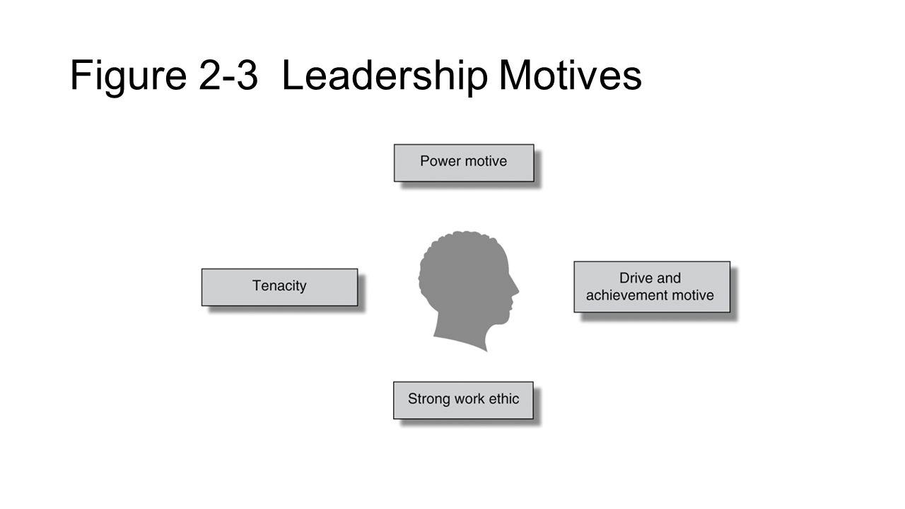 Figure 2-3 Leadership Motives