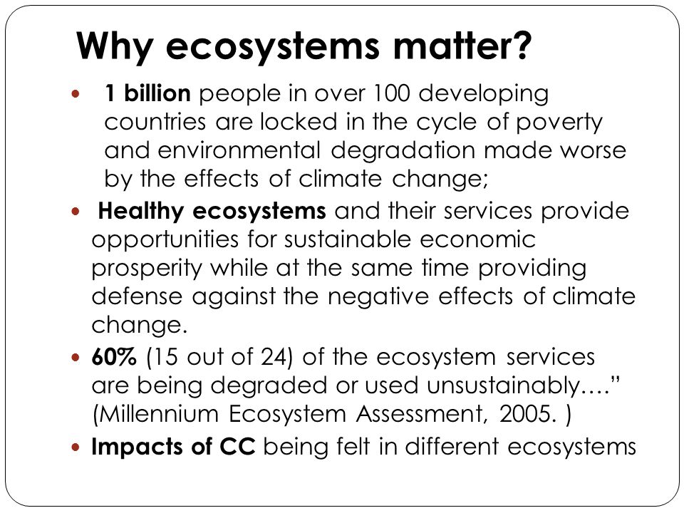Why ecosystems matter? 1 billion people in over 100 developing countries are locked in the cycle of poverty and environmental degradation made worse b