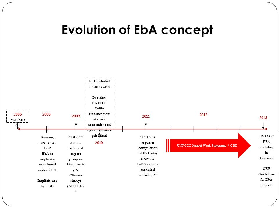 A large range of adaptation activities using EBA approaches being implemented in various ecosystems.