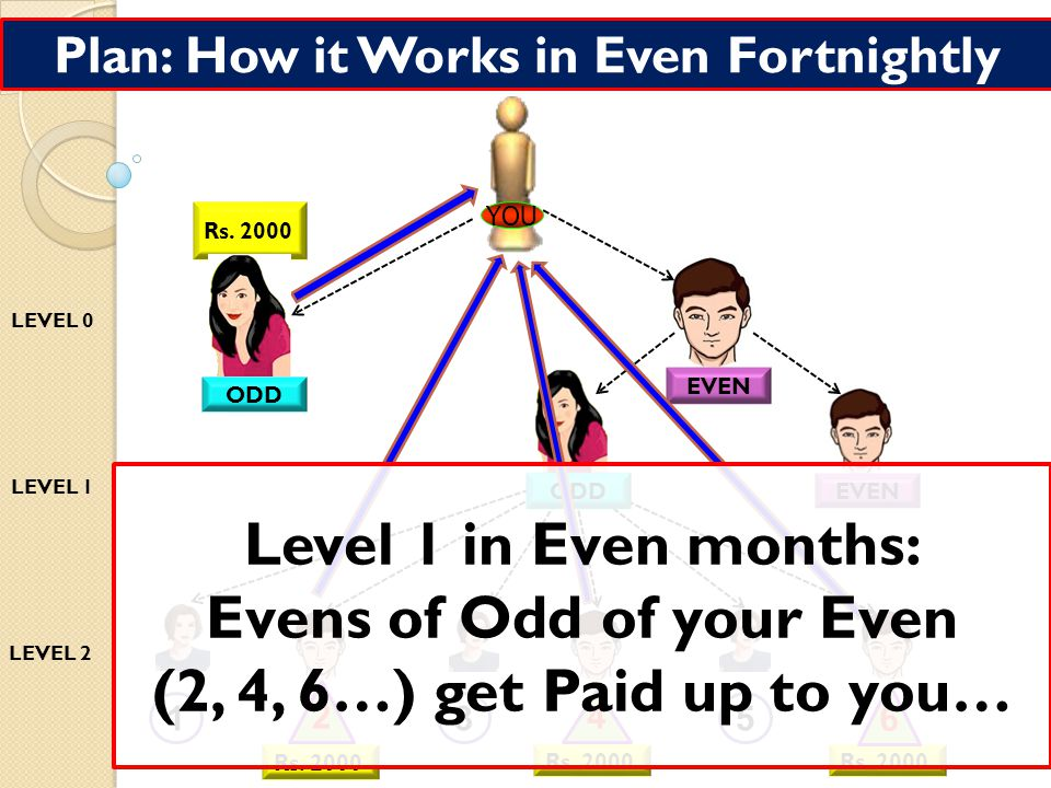 Plan: How it Works in Odd Fortnightly 1 Rs.