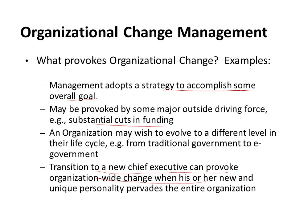 Organizational Change Management What provokes Organizational Change.