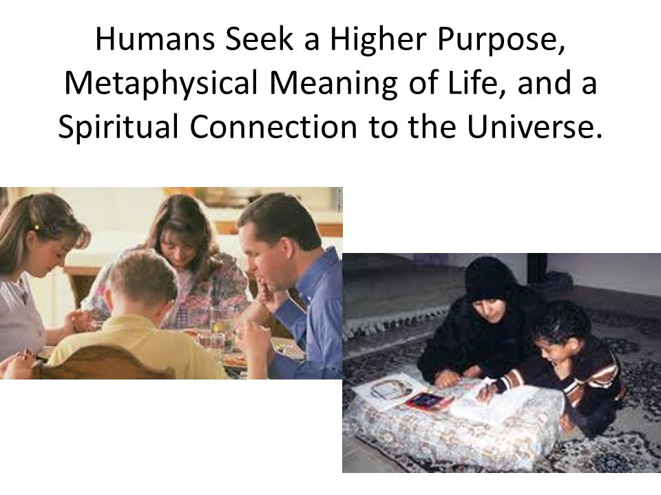 Humans Seek a Higher Purpose, Metaphysical Meaning of Life, and a Spiritual Connection to the Universe.