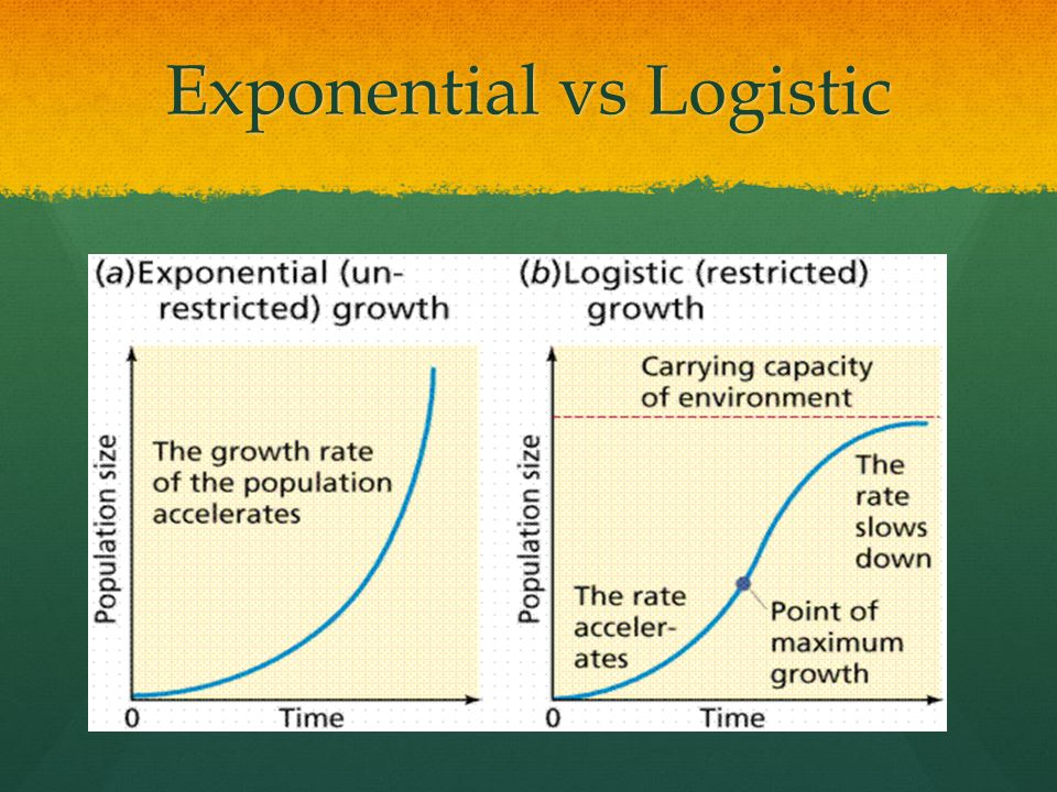 Exponential vs Logistic