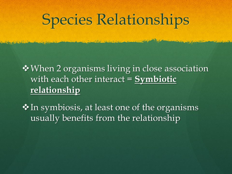 Species Relationships  When 2 organisms living in close association with each other interact = Symbiotic relationship  In symbiosis, at least one of