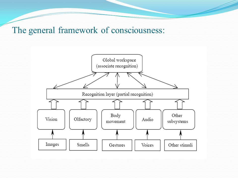 The general framework of consciousness: