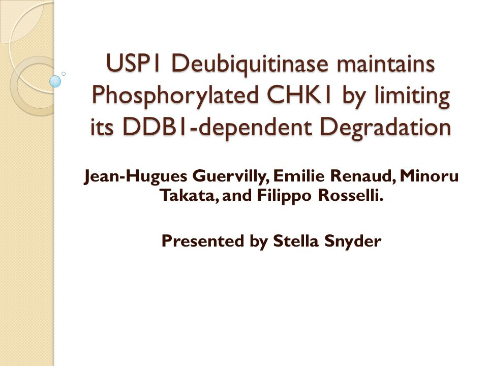 USP1 Deubiquitinase maintains Phosphorylated CHK1 by limiting its DDB1-dependent Degradation Jean-Hugues Guervilly, Emilie Renaud, Minoru Takata, and Filippo Rosselli.