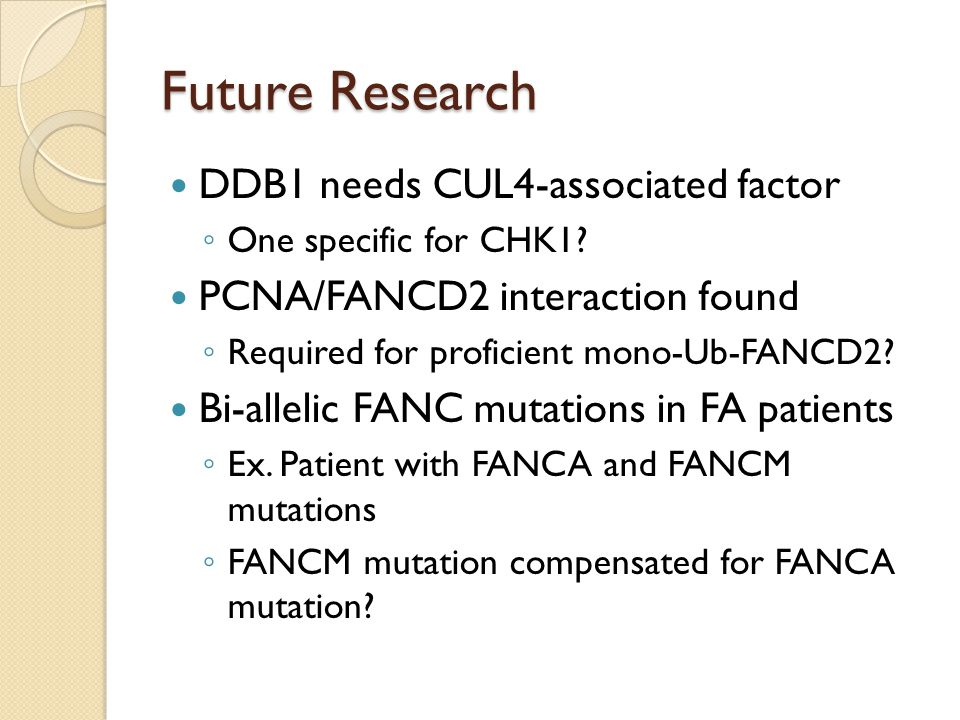 Future Research DDB1 needs CUL4-associated factor ◦ One specific for CHK1.