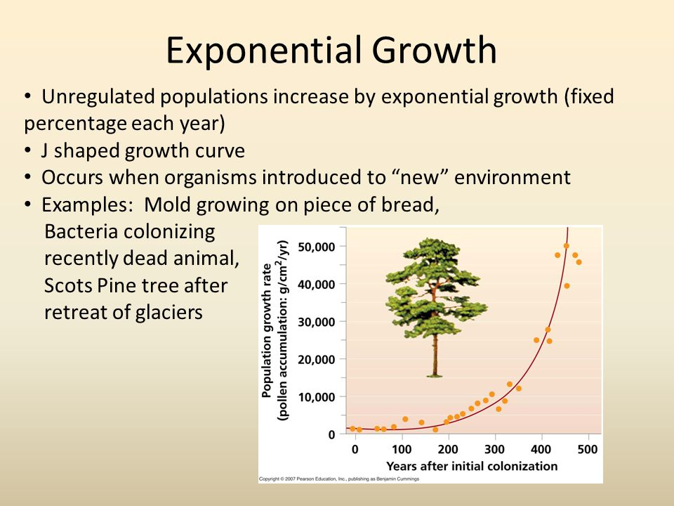 Exponential Growth Unregulated populations increase by exponential growth (fixed percentage each year) J shaped growth curve Occurs when organisms introduced to new environment Examples: Mold growing on piece of bread, Bacteria colonizing recently dead animal, Scots Pine tree after retreat of glaciers
