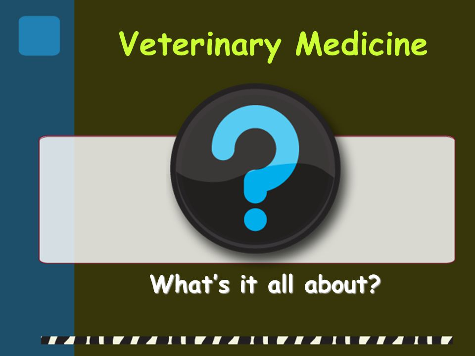 Regulatory Medicine  Quarantine & inspect animals brought into the United States  Test for presence of disease & supervise animal shipments  Enforce animal welfare laws