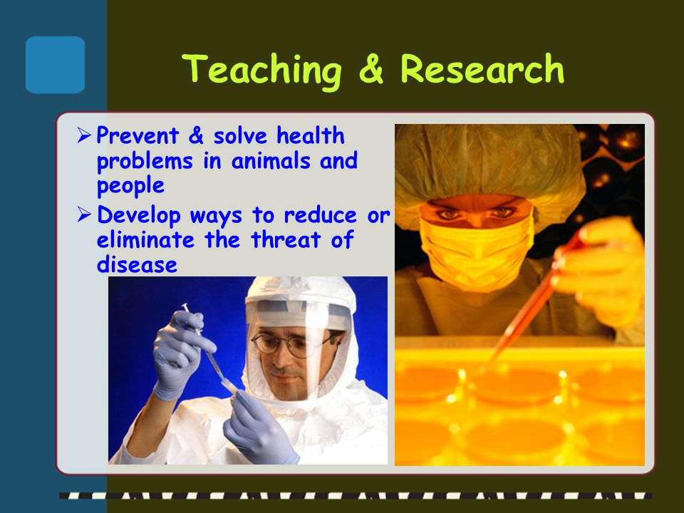  Prevent & solve health problems in animals and people  Develop ways to reduce or eliminate the threat of disease