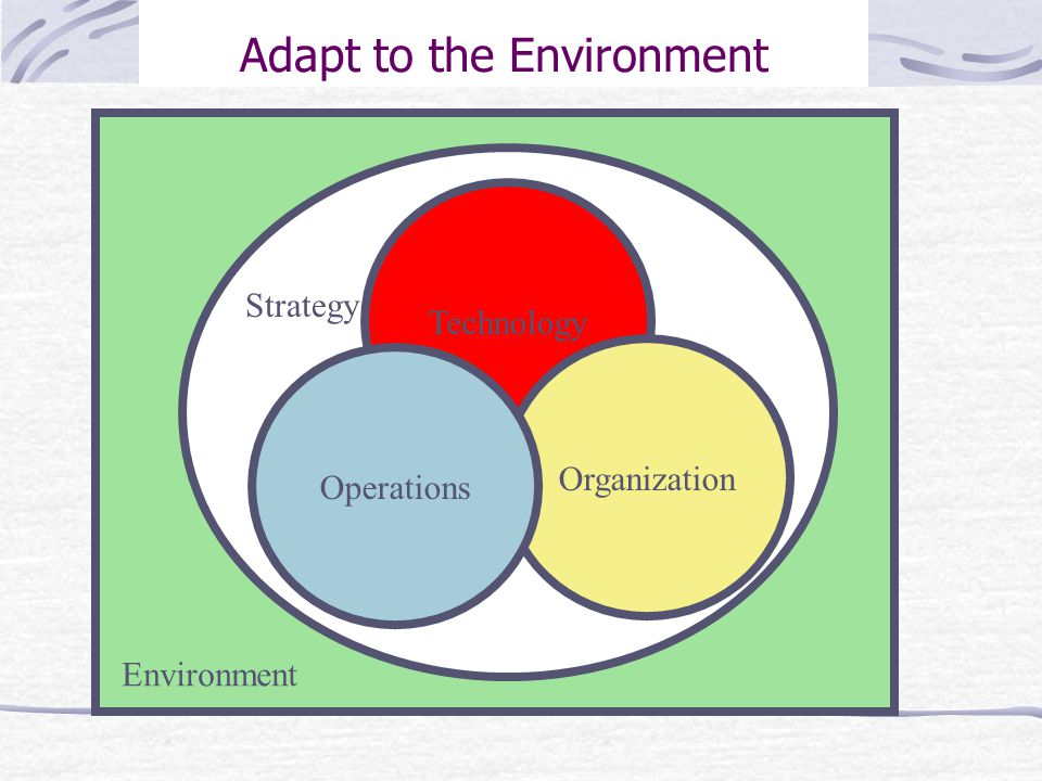 Adapt to the Environment Technology Organization Operations Environment Strategy