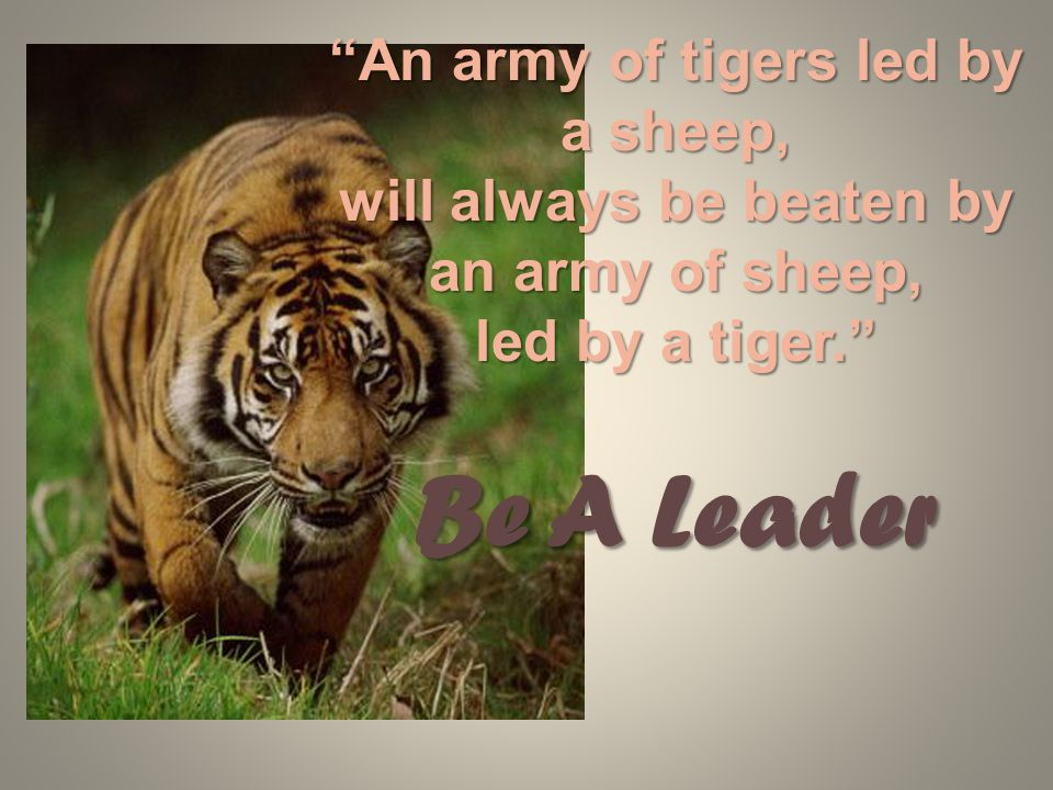 An army of tigers led by a sheep, will always be beaten by an army of sheep, led by a tiger. Be A Leader