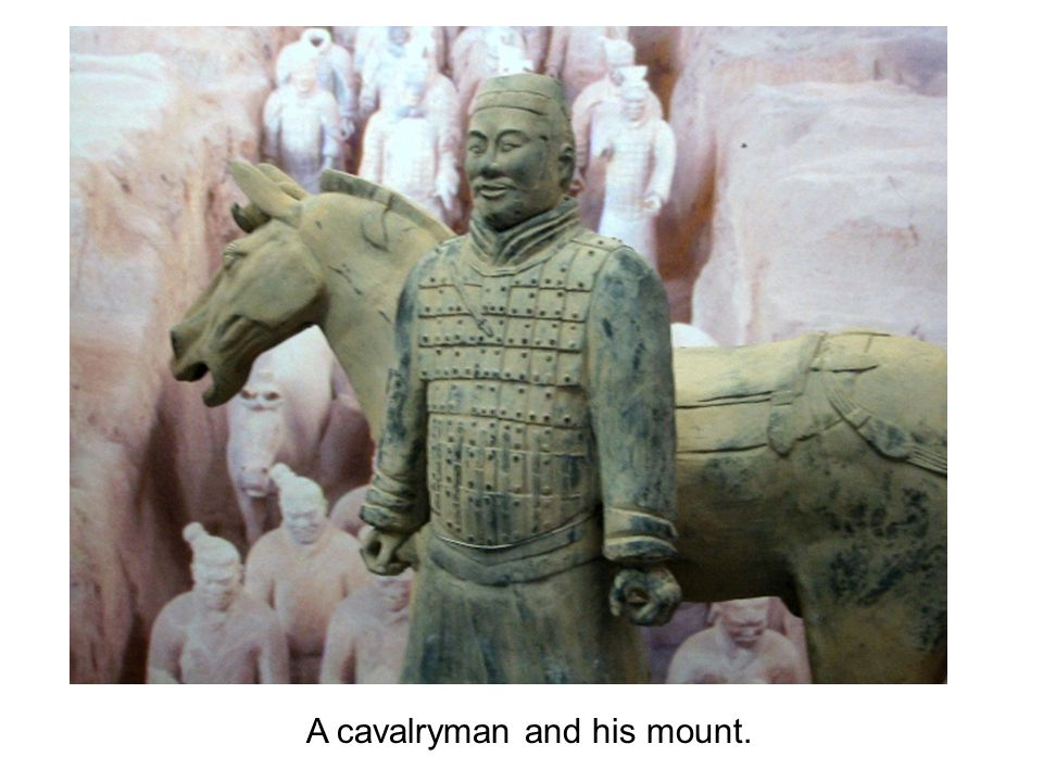 A cavalryman and his mount.