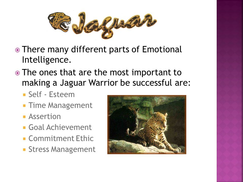  There many different parts of Emotional Intelligence.