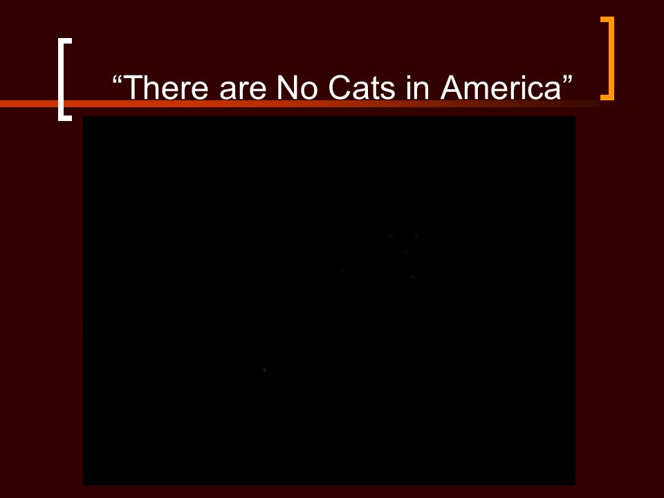 """""""There are No Cats in America"""""""