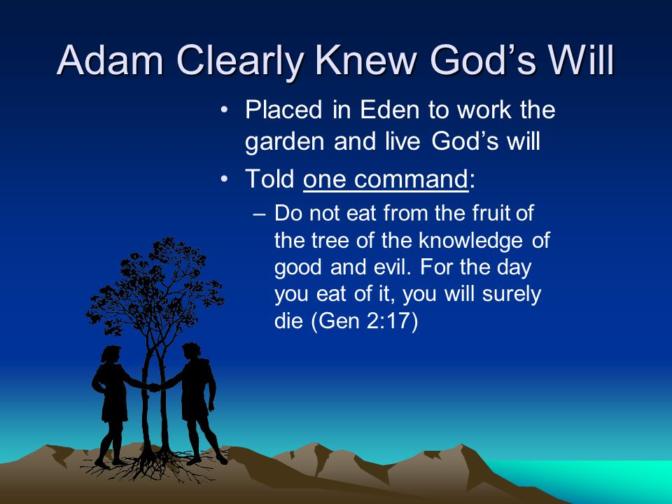 Adam Clearly Knew God's Will Placed in Eden to work the garden and live God's will Told one command: –Do not eat from the fruit of the tree of the knowledge of good and evil.