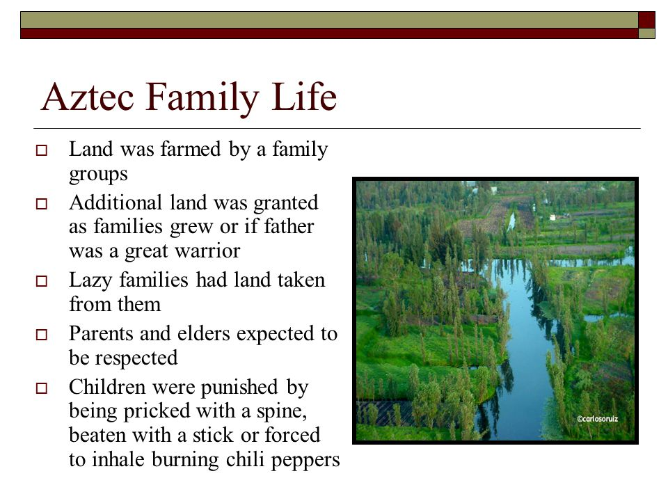 Aztec Family Life  Land was farmed by a family groups  Additional land was granted as families grew or if father was a great warrior  Lazy families had land taken from them  Parents and elders expected to be respected  Children were punished by being pricked with a spine, beaten with a stick or forced to inhale burning chili peppers