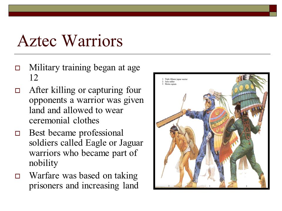 Aztec Warriors  Military training began at age 12  After killing or capturing four opponents a warrior was given land and allowed to wear ceremonial clothes  Best became professional soldiers called Eagle or Jaguar warriors who became part of nobility  Warfare was based on taking prisoners and increasing land