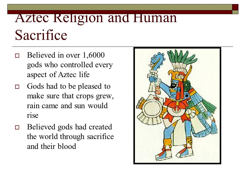 Aztec Religion and Human Sacrifice  Believed in over 1,6000 gods who controlled every aspect of Aztec life  Gods had to be pleased to make sure that crops grew, rain came and sun would rise  Believed gods had created the world through sacrifice and their blood