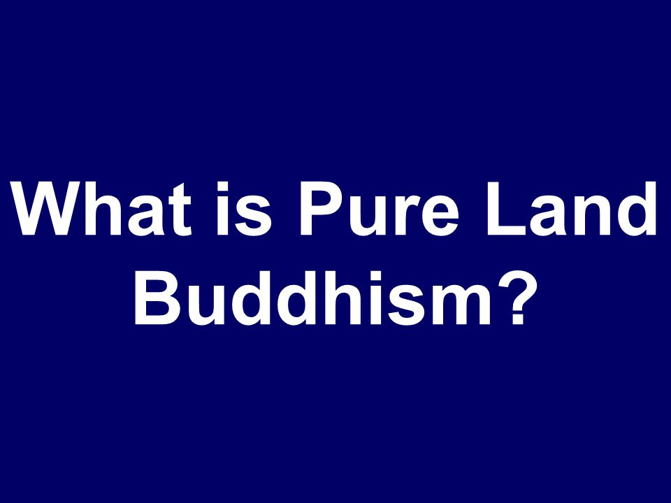Amida Buddhism is also known as this