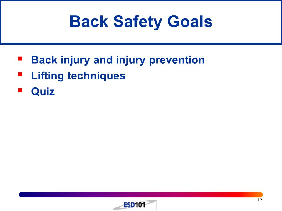 13 Back Safety Goals  Back injury and injury prevention  Lifting techniques  Quiz