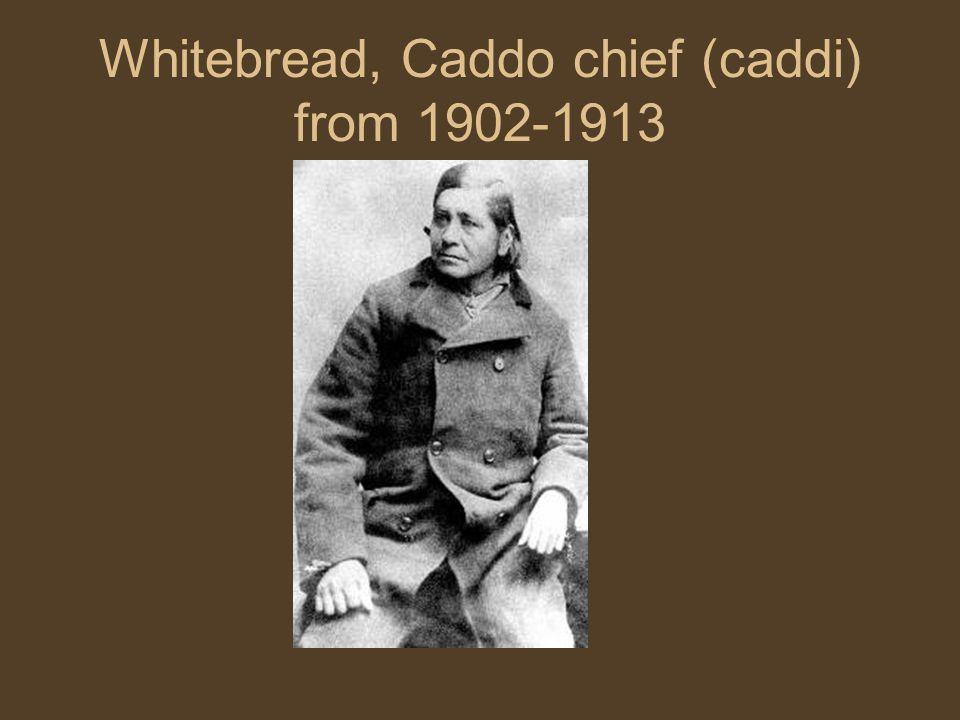 Whitebread, Caddo chief (caddi) from 1902-1913