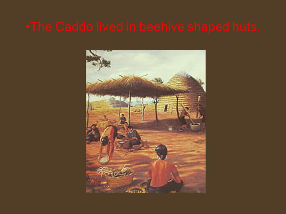 The Caddo lived in beehive shaped huts.