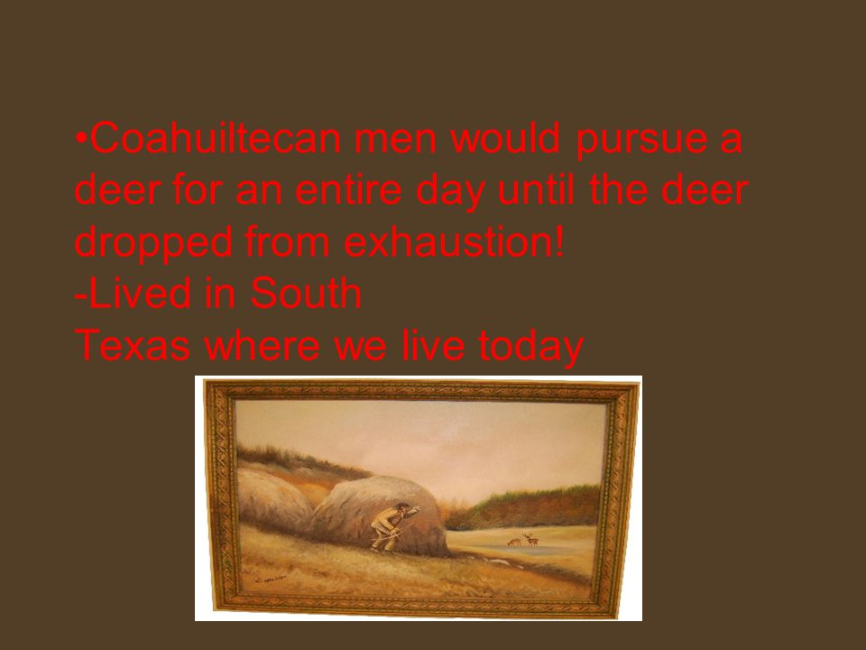 Coahuiltecan men would pursue a deer for an entire day until the deer dropped from exhaustion.