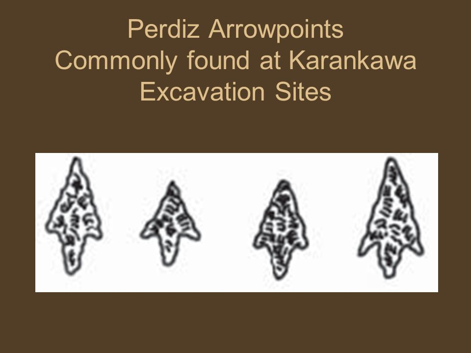 Perdiz Arrowpoints Commonly found at Karankawa Excavation Sites