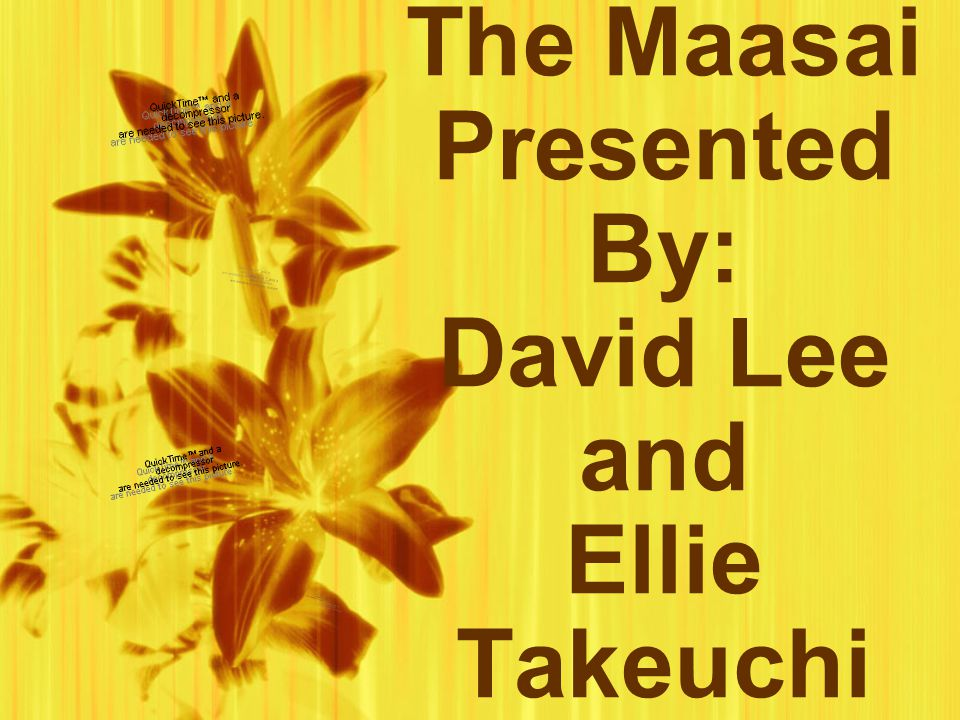 The Maasai Presented By: David Lee and Ellie Takeuchi