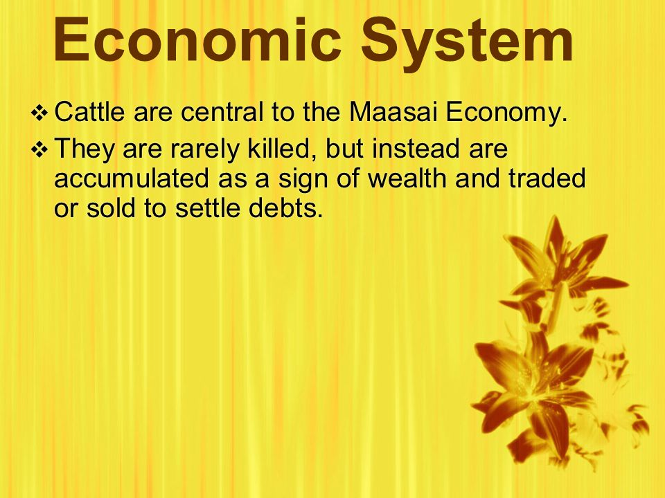 Economic System  Cattle are central to the Maasai Economy.